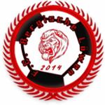 Bergische Löwen
